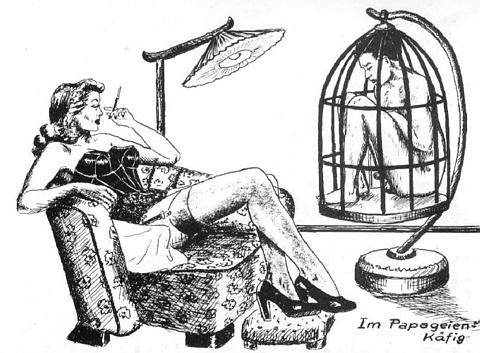 The Parrot Cage